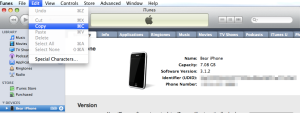 iPhone Device ID from iTunes